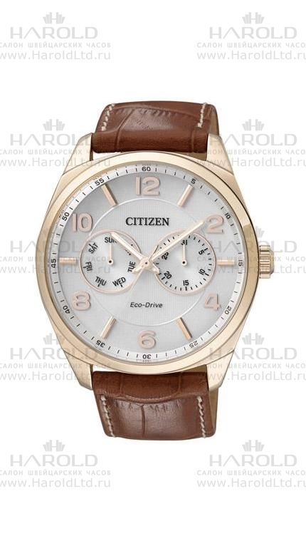 Citizen Eco-Drive AO9024-16A