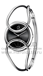 Часы Calvin Klein cK Inclined K4C2S111